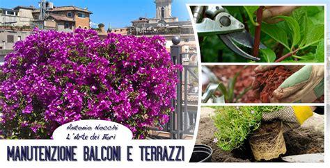 balconi e terrazzi manutenzione balconi e terrazzi a roma l arte dei fiori