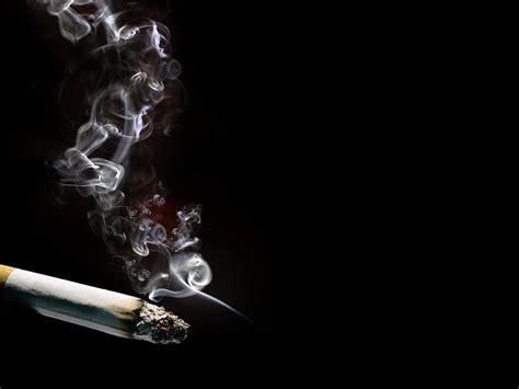 lit cigarette ppt template lit cigarette ppt background