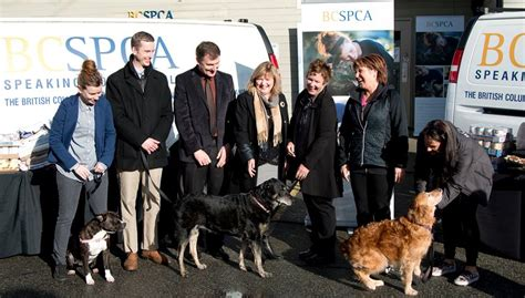 is premier pups a puppy mill columbia cracking on puppy mills with new legislation critter