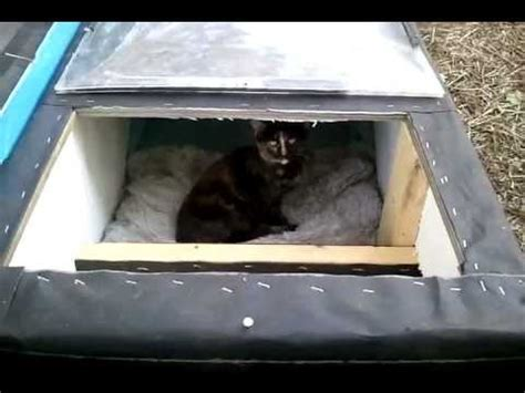 winter cat shelter/house: feral cat day youtube