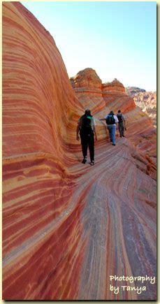best 25+ the wave hike ideas on pinterest | the wave utah