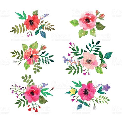 theme line vintage flower free vector flowers set floral collection with watercolor