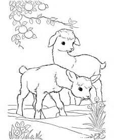 farm animal coloring book coloring home