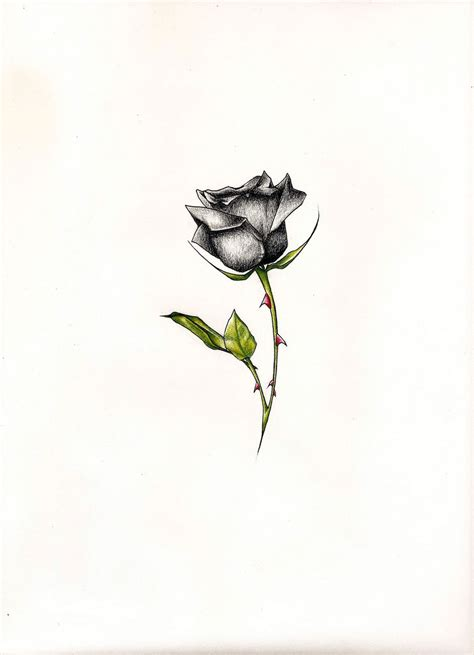 small black rose tattoo small black and white tattoos www pixshark