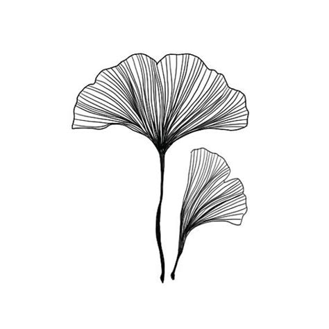 ginkgo leaf tattoo 39 best ginkgo leaf images on patterns