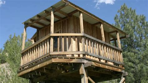 Home Plans Wrap Around Porch 14 tree house ideas your kids will love photo slideshow