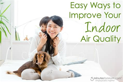 how to improve basement air quality easy ways to improve your indoor air quality 5 minutes