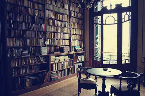 novel room 100 words 369 a book room velvet verbosity