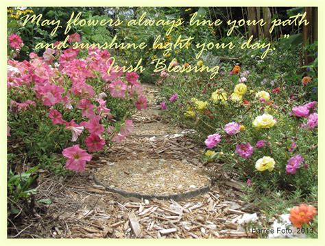 10 Lines On My Garden Quotes About May Flowers Quotesgram
