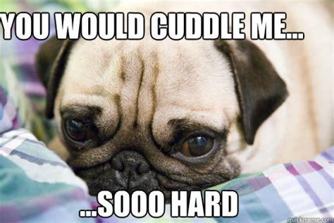 Cuddle Meme - you would cuddle me sooo hard puppy cuddle quickmeme
