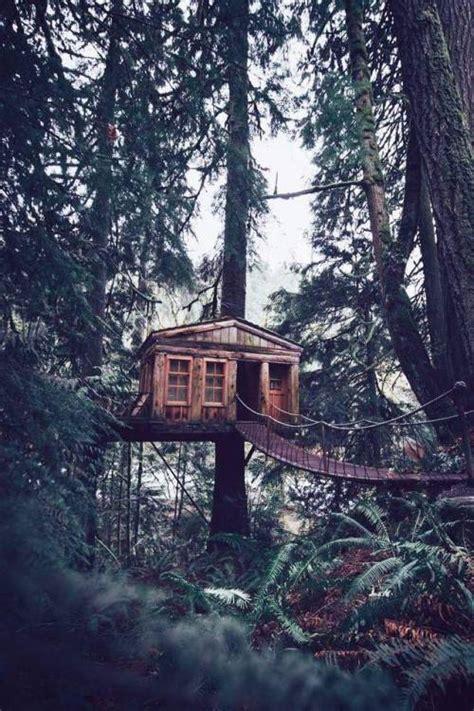 treehouse aesthetic tumblr