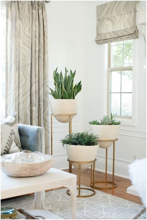 how to decorate corners of living room 15 amazing ideas to display your indoor plants
