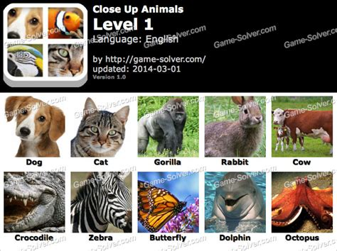 close  animals answers game solver