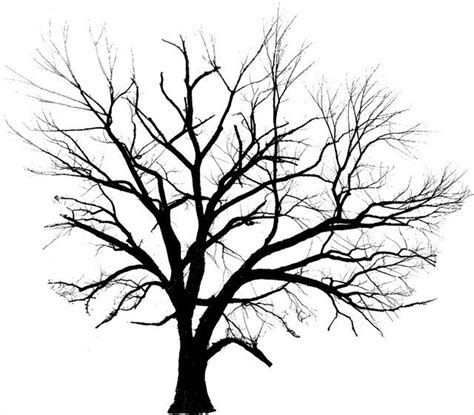 tree line tattoo line drawing trees clipart best trees in 2018