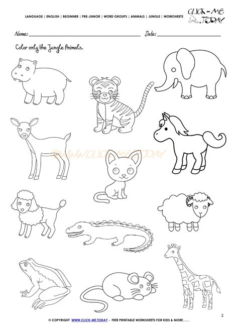 jungle animals worksheet activity sheet color 2