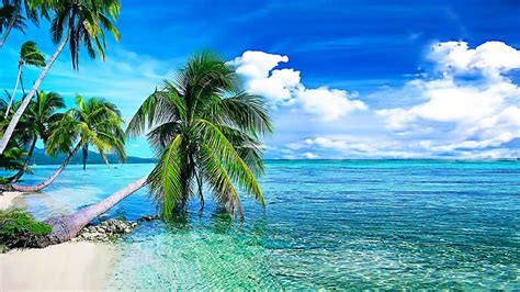 live wallpaper for laptop nature free live wallpapers for pc hd 1024 215 576 3d live wallpapers