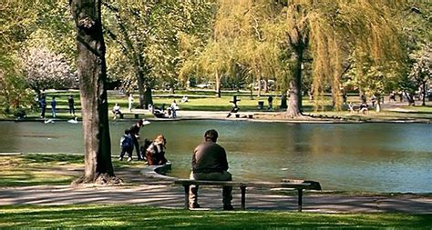 good will hunting park bench scene the bench from good will hunting was quickly turned into