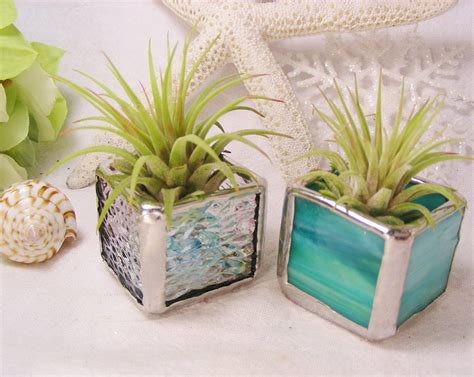 office desk plant pretty plants for office joy studio design gallery