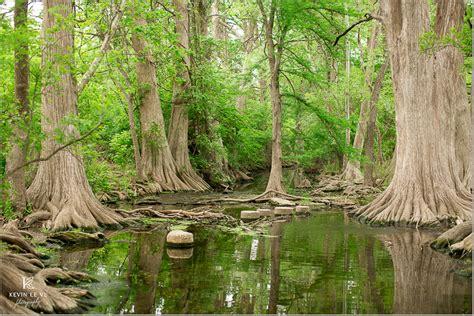 aaron and casandra cibolo creek in san antonio texas