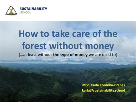 How To Take Care Of How To Take Care Of The Forest Without Money At Least Without The T