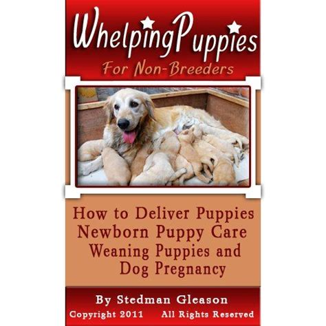 how to wean a puppy whelping puppies for non breeders how to deliver puppies newborn puppy care weaning
