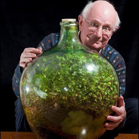 sealed bottle garden 40 year old self sustaining ecosystem in a jar reclaim