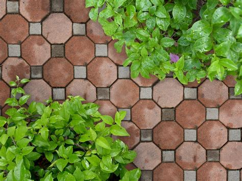 ideas  disenar  jardin  piedras