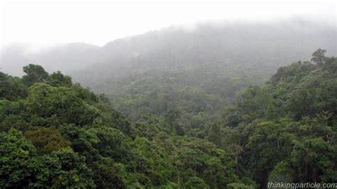 Bangalore To Kukke Subramanya Sleeper by Sakleshpur Green Route Trek Karnataka Western Ghats