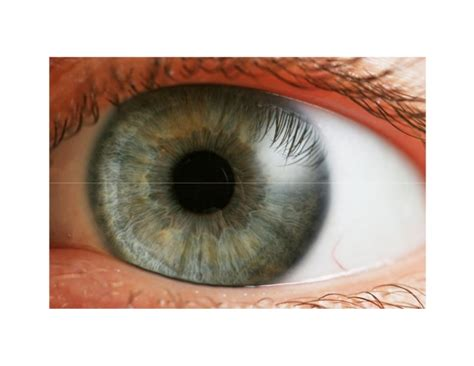 how to your to in one spot black spots in vision cloudy vision in one eye how to improve your