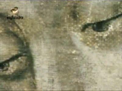 imagenes ojos guadalupe los ojos de la virgen de guadalupe catoliscopio com