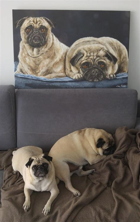 i my pug so much i my pugs so much i had a painting made of them got it today pugs