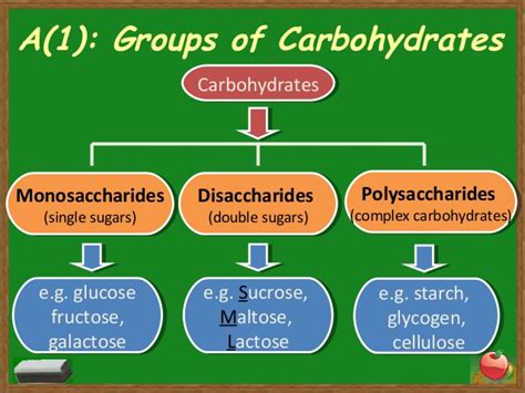3 carbohydrates groups topic 3 chapter 4 part 1 nutrients
