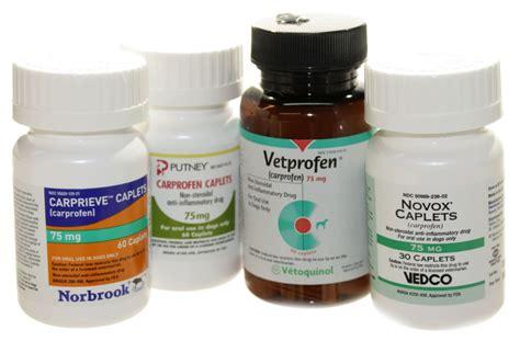 carprofen for dogs generic carprofen for arthritis in dogs vetrxdirect blogvetrxdirect