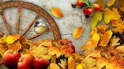 thanksgiving wallpaper for mac autumn fall landscape nature tree forest leaf leaves
