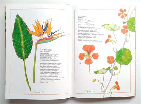 inventario ilustrado de flores inventarios ilustrados de kalandraka ciencia bonita rayuelainfancia