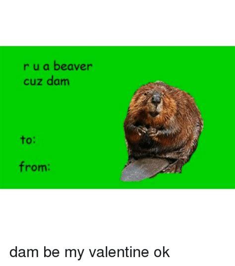 Beaver Meme - 25 best memes about beaver beaver memes