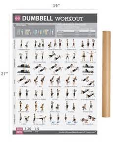 at home dumbbell workout 1000 ideas about dumbbell workout on