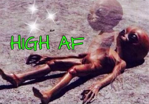 Stoned Alien Meme - the world s best photos of marijuana and meme flickr