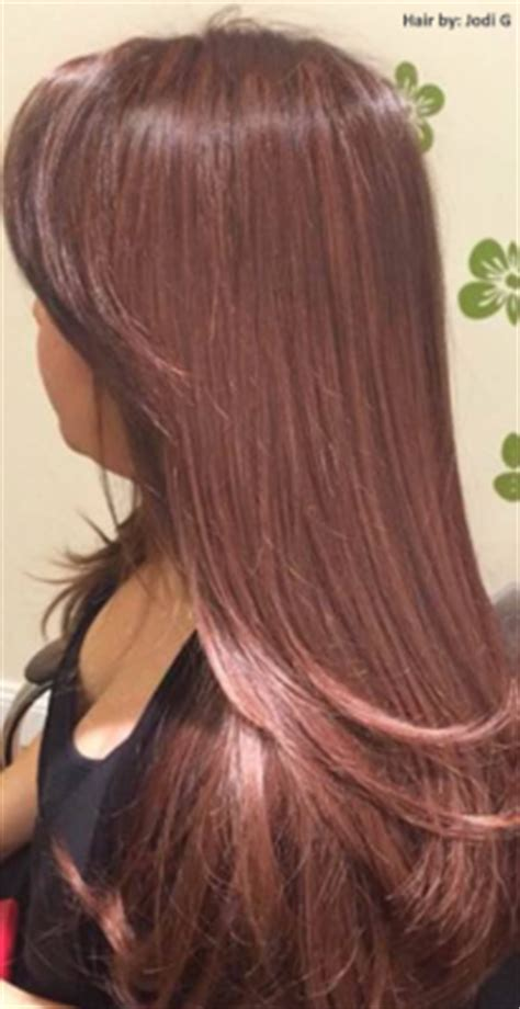 Hair Style Books For Salon 2017 En by 2015 Color Trends