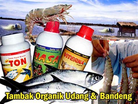 Pupuk Organik Untuk Tambak Bandeng budidaya bandeng distributor pupuk organik
