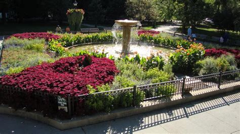 briarpatch landscaping chicago illinois proview