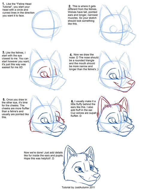 werewolf man tutorial how to draw canines head by justautumn on deviantart
