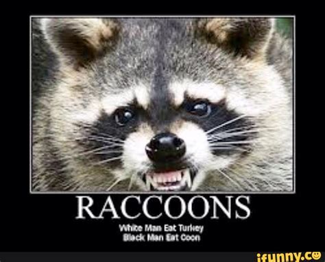 Excellent Raccoon Meme - racoon meme 28 images evil raccoon meme excellent