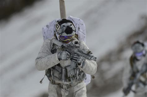 Winter Navy photo seals operating in winter conditions