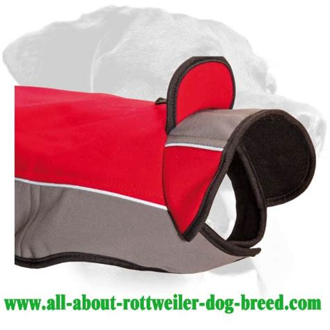 winter coats for rottweilers rottweiler winter coat dogs in our photo