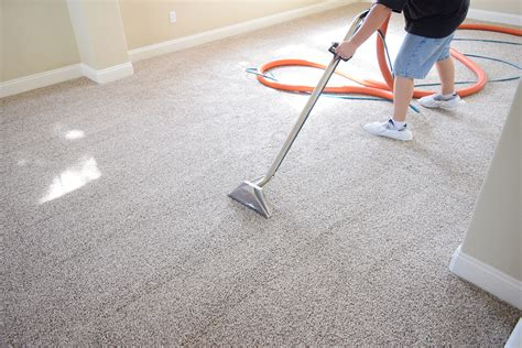 how to clean a rug without a steam cleaner carpet cleaning