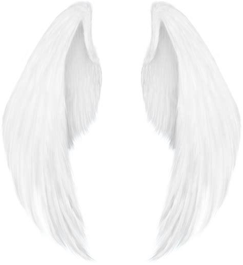 imagenes de alas blancas alas png by angelarominarivas on deviantart