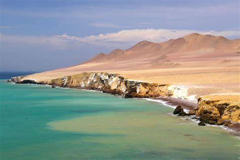 en la reserva nacional de paracas se inicia la temporada de verano y islas ballestas reserva nacional de paracas full day desde