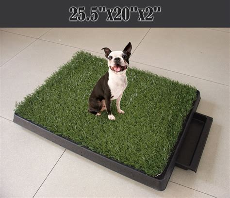 Cassandra M's Place: 3 Piece Indoor Dog Potty Tray Review