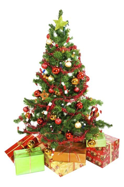 fotos de arboles en png 14 193 rboles de navidad en formato png transparente